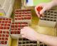 Pressemitteilung: CETA | Wirtschaftsinitiative warnt vor einseitigem Handelsvorteil für kanadische Unternehmen
